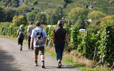 Tourismus ganzheitlich fördern